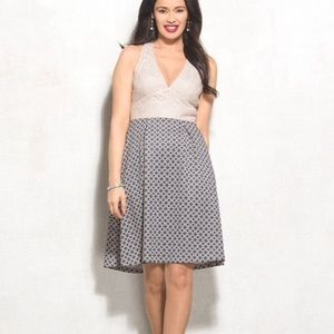 NWT Adrianna Papell Lace and Scuba Knit Dress